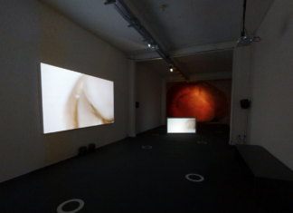 VIRTUAL TOUR OF DIFFUSION FESTIVAL AT CHAPTER